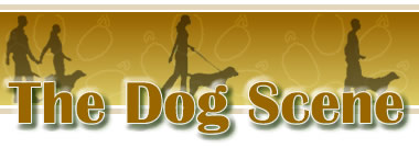The Dog Scene - Premier site dedicacted to Pedigreed Dogs in the UK. A site for everything you wanted to know about dogs, but didn't know where to ask